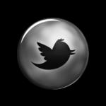 new-twitter-bird